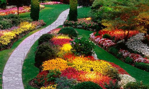 Landscape Design Los Angeles Ca Arbor Tree Care